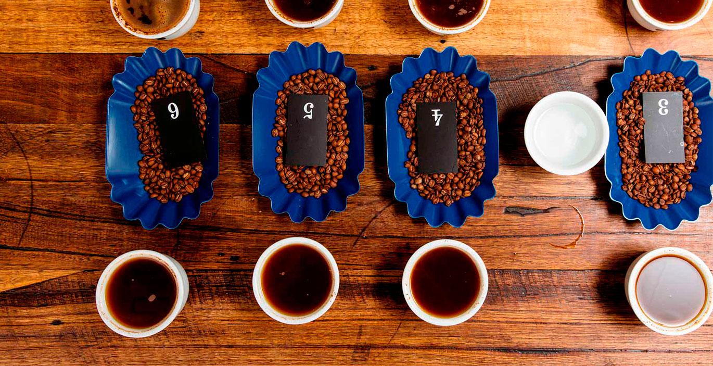 Cupping Bowl – чашки для каппинга Ancap